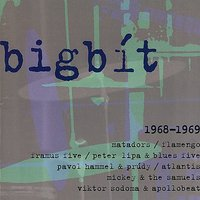 Bigbít / 1968 - 1969 — The Matadors, Framus Five, Flamengo, Apollobeat