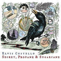 Secret, Profane and Sugarcane — Elvis Costello