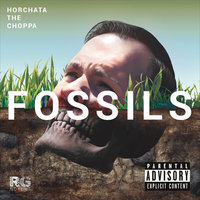 Fossils — Horchata the Choppa