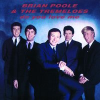 Do You Love Me — Brian Poole & The Tremeloes