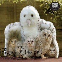 Eyes of the Owl, Vol. 1 — сборник