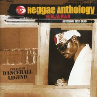 Reggae Anthology: Anything Test Dead — Ninja Man
