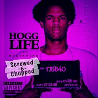 Hogg Life: The Beginning (Screwed & Chopped) — Slim Thug