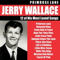 Primrose Lane — Jerry Wallace