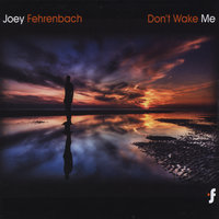 Don't Wake Me — Joey Fehrenbach