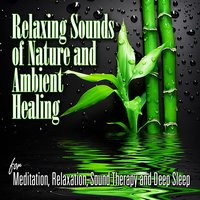 Relaxing Sounds of Nature and Ambient Healing for Mediation, Relaxation, Sound Therapy and Deep Sleep — Sounds Of Nature Relaxation