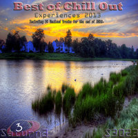 Best of ChillOut Experiences 2013 — Richard Sander