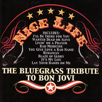 The Bluegrass Tribute To Bon Jovi: Nice Life — Pickin' On Series