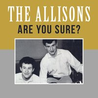 Are You Sure? — The Allisons