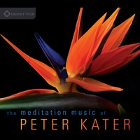 The Meditation Music of Peter Kater — Peter Kater