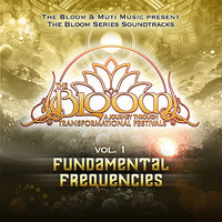 The Bloom Series Vol 1 : Fundamental Frequencies — сборник