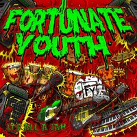 It's All A Jam — Fortunate Youth