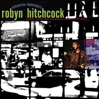 Storefront Hitchcock: Music From The Jonathan Demme Picture — Robyn Hitchcock