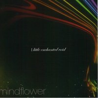 Little Enchanted Void — Mindflower