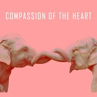 Compassion of the Heart — Japanese Relaxation and Meditation, Massage Music, Native American Flute