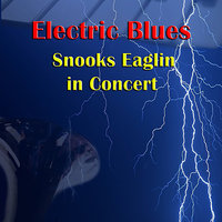 Snooks Eaglin in Concert — Snooks Eaglin