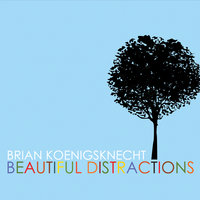 Beautiful Distractions — Brian Koenigsknecht