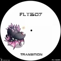 Transition — Fly307