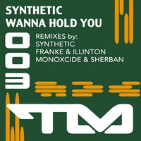 Wanna Hold You — Synthetic