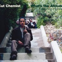 What's The Altitude — Cut Chemist