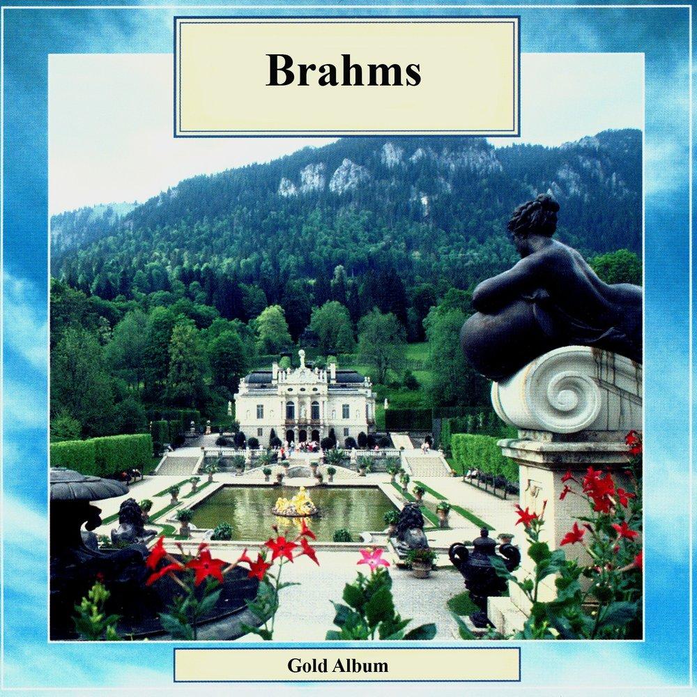 bram shipely