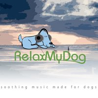 Soothing Music Designed for Dogs: A Relaxing Way to Relieve Stress, Anxiety and Loneliness — RelaxMyDog