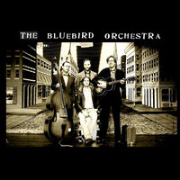 The Bluebird Orchestra — The Bluebird Orchestra
