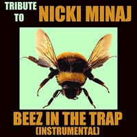 Tribute To Nicki Minaj (Beez In The Trap Cover) — The Beat Mechanics