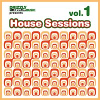 Drizzly House Sessions, Vol. 1 — сборник
