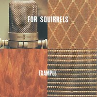 Example — For Squirrels