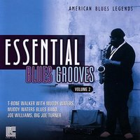 Essential Blues Grooves Vol. 2 — сборник