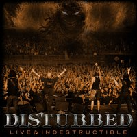 Live And Indestructible — Disturbed