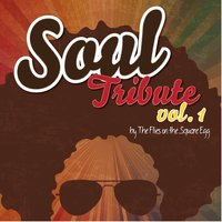 Soul Tribute, Vol.1 — Flies on the Square Egg