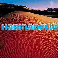 Flip Your Mind — Karmadelic