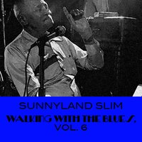 Walking with the Blues, Vol. 6 — Sunnyland Slim