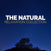The Natural Relaxation Collection — Nature Sound Collection