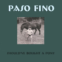 Should've Bought a Pony — Paso Fino