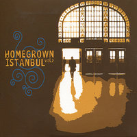 Homegrown Istanbul, Vol. 2 — сборник
