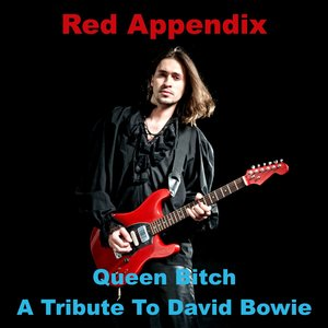 Red Appendix - A Tribute To David Bowie