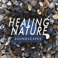 Healing Nature Soundscapes — The Healing Sounds of Nature
