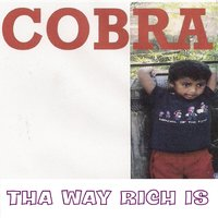 Tha Way Rich Is — Cobra