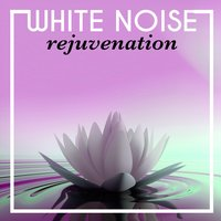 White Noise Rejuvenation — Nature White Noise for Relaxation and Meditation
