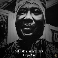 Muddy Waters: Déjà Vu — Muddy Waters
