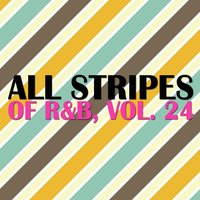 All Stripes of R&B, Vol. 24 — сборник