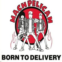 Born To Delivery — Mach Pelican