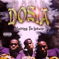 Waiting To Inhale — Dosia
