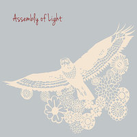 Assembly Of Light — Assembly Of Light