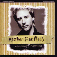 Another Fine Mess — Chesney Hawkes