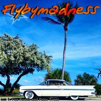 Flat Roads and Palm Trees — Flybymadness