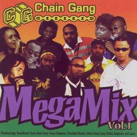 Chain Gang Mega Mix Vol. 1 — Various Artists - Flynn & Flynn Music